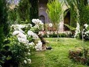 Isfahan-39
